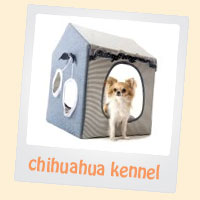chihuahua kennel